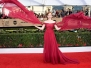Screen Actors Guild Awards 2017 - Gallery 1