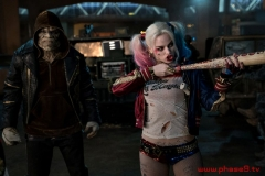 Suicide Squad - Gallery 1