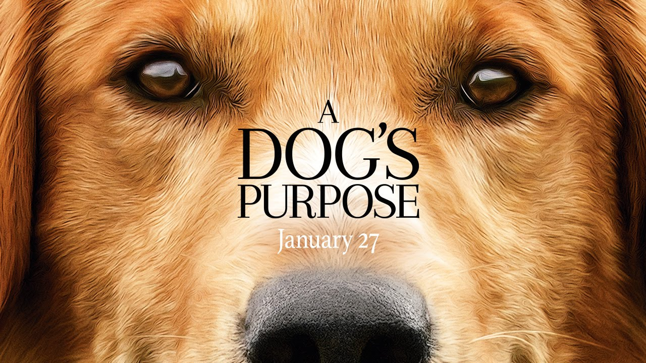 A Dog's Purpose – Official Trailer (HD)