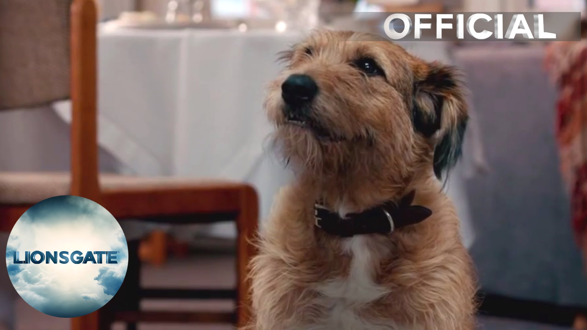 "Absolutely Anything – Clip ""Dog Talking"" –  In Cinemas August 14"
